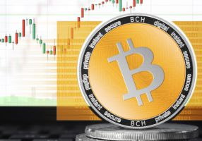 How does the bitcoin market work? Its features and playing field