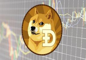 Dogecoin pool as a meeting place for professionals and beginners