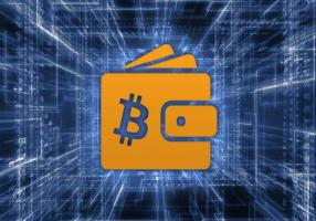 How to backup bitcoin wallet in the world of the Internet