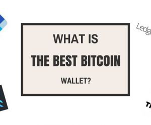 What bitcoin wallet should I use: the best option for this year