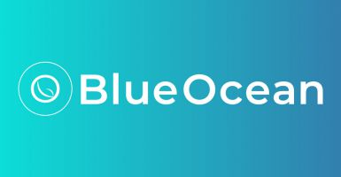 BlueOcean Ventures II  - Volumina Medical